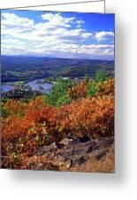 Wantatisquet Mountain Foliage Greeting Card