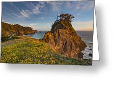 Warm And Peaceful Coast Greeting Card