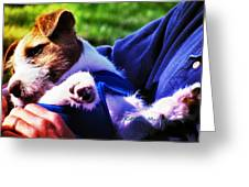 Warm Embrace Greeting Card