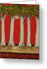 Warm Sky, Cool Trees Greeting Card
