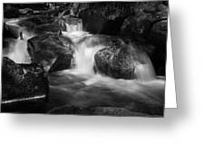 Warme Bode, Harz - Monochrome Version Greeting Card