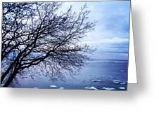 Warming Waters  Greeting Card