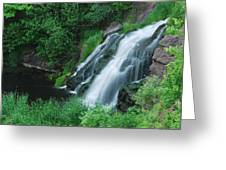 Warner Falls Greeting Card by Michael Peychich