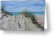 Warren Dunes Greeting Card