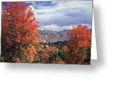 212m45-wasatch Mountains In Autumn  Greeting Card