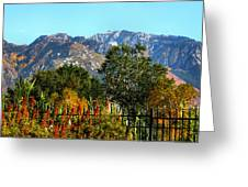 Wasatch Mountains In Autumn Greeting Card