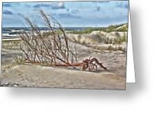 Washed Ashore - Sketch Greeting Card