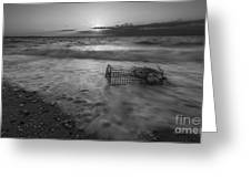 Washed Up Crab Cage 16x9 Bw Greeting Card