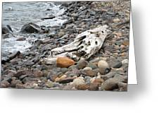 Washed Up Greeting Card