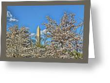 Washington Monument # 11 Greeting Card