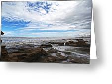 Washington Oaks Garden State Park Greeting Card