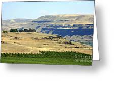 Washington Stonehenge With Vineyard Greeting Card