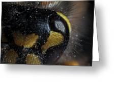 Wasp Eye Greeting Card