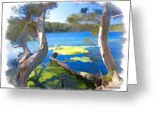 Wat-0002 Avoca Estuary Greeting Card