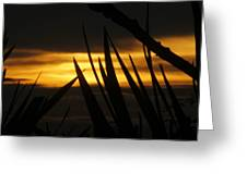 Watch More Sunsets Greeting Card