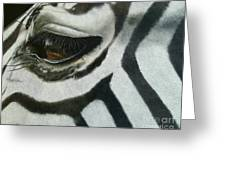 Watchful Eye  Greeting Card