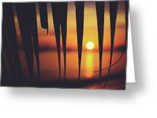 Watching Beautiful Caribbean Sunset From A Simple Beach Shack Greeting Card