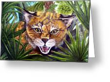 Watching  Florida Bobcat Greeting Card