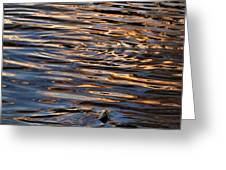 Water Abstract 4 Greeting Card