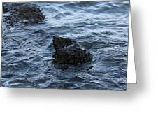 Water And A Rock Greeting Card