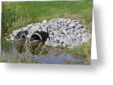 Water And Culverts Greeting Card