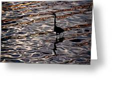 Water Bird Series 17 Greeting Card