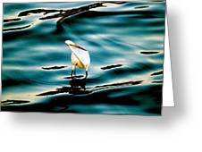 Water Bird Series 33 Greeting Card