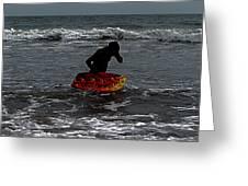 Water Boarding Greeting Card
