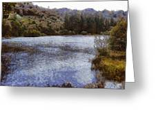 Water Body Surrounded By Greenery Greeting Card