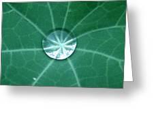 Water Crystal Greeting Card