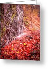 Water Dripping On The Rock Wall Greeting Card
