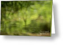 Water Drops On Reflected Pond Greeting Card