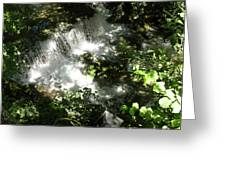 Water Fall In The Woods Greeting Card