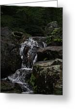 Water Fall Stilled Greeting Card