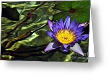 Water Floral Greeting Card