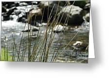 Water Flowing 1 Greeting Card