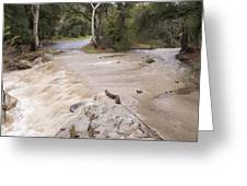 Water Flowing In The North Fork Greeting Card