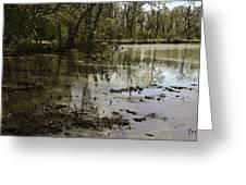 Water Garden Lake View Greeting Card