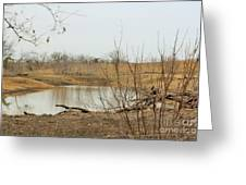 Water Hole 007 Greeting Card