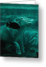 Water Horse Ballet Greeting Card