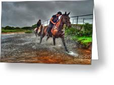 Water Horses Greeting Card