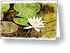 Water Hyacinth Two Wc Greeting Card