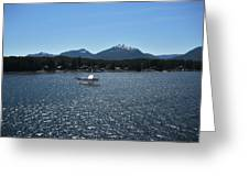 Water Landing Greeting Card
