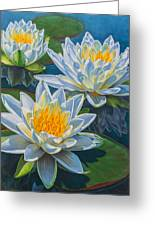 Water Lilies 12 - Fire And Ice Greeting Card