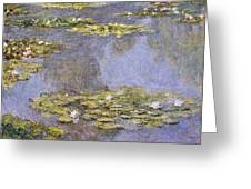 Water Lilies 8 Greeting Card