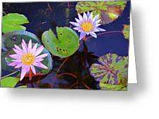 Water Lilies In Kauai Greeting Card