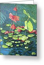 Water Lillies 1 Greeting Card