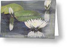 Water Lillies Greeting Card by Shirley Lawing