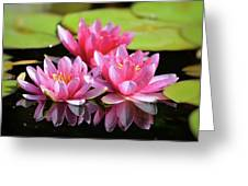 Water Lilly Triplets Greeting Card
