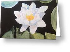 Water Lily 4 Greeting Card